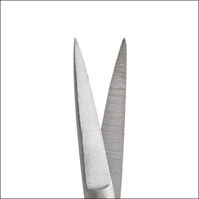 Iris Scissors, curved